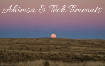 Ahimsa and Tech Timeouts – By Sawrah
