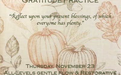 Cultivating Gratitude By Molly McGillicuddy